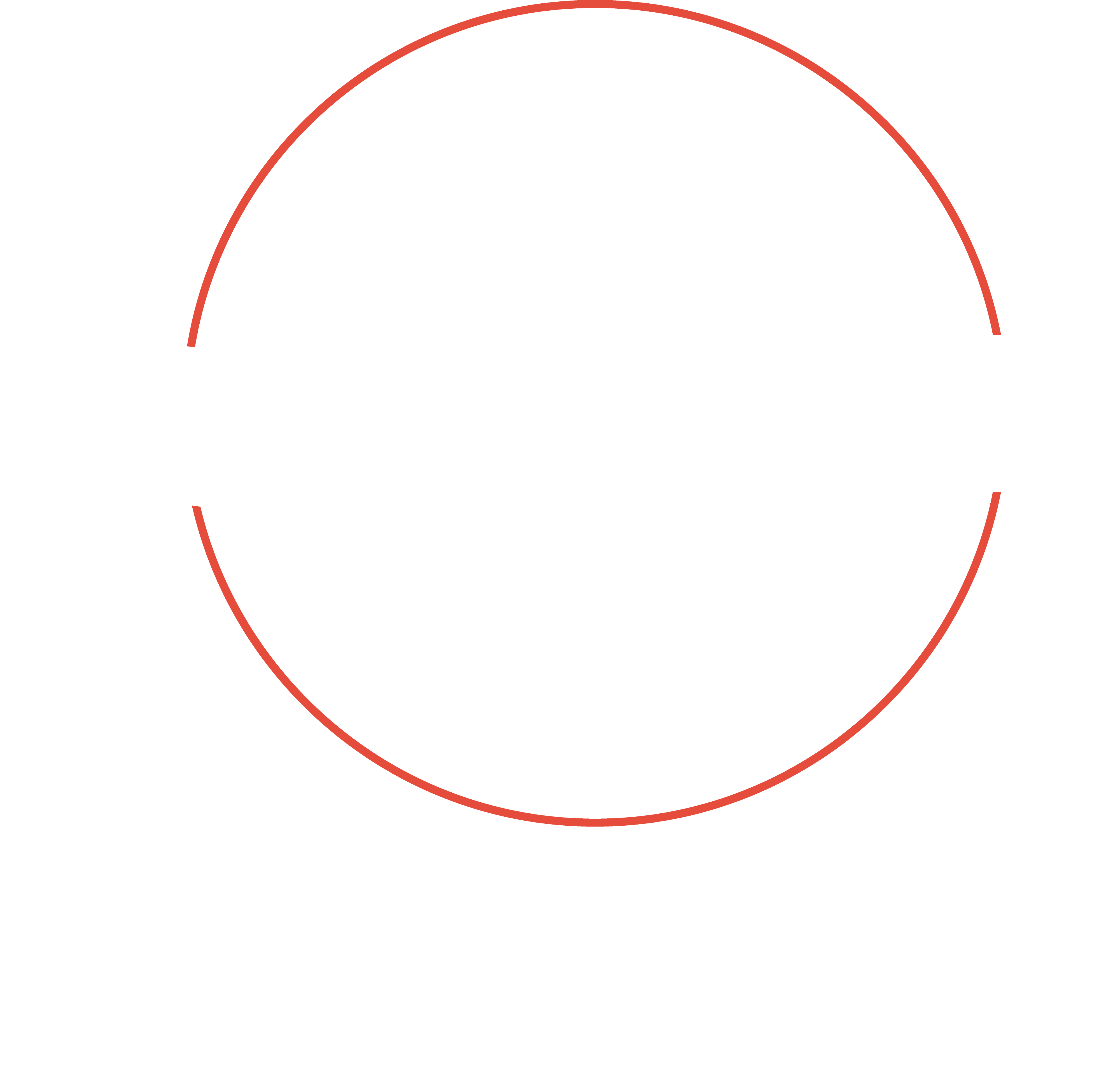 Visual Flow logo wit